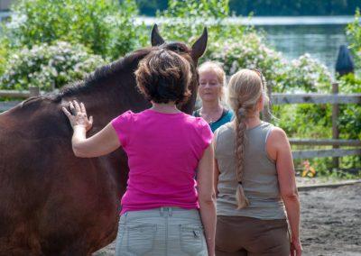 Anna Ullenius - Joy of being you through horses