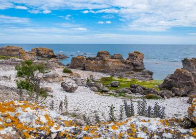 Gotland juli 2015