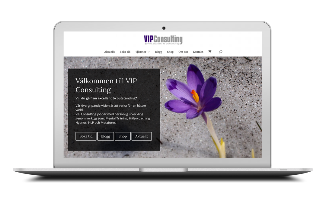 VIP Consulting