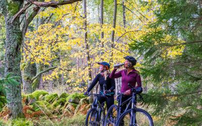 Fotografering för cykelleder i Tiveden